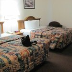 Φωτογραφία: Red Roof Inn & Suites Ocala