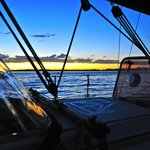 Getaway Sailing on the Gold Coast- Whale Watching