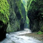 Oneonta Gorge
