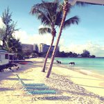 Bilde fra Grand Barbados Beach Resort