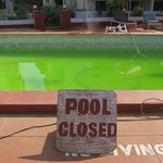  Swimming Pool was closed for 4 days - just look at the colour!