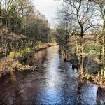  River Nidd