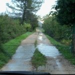  Driveway to the property after a rain
