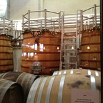 eco-friendly wine barrels at Tablas Creek