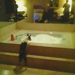 my baby mistique checking out the jacuzzi