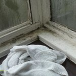 mold, condensation and damp in bedroom again!