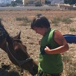 Jack named the horse that lives nearby Stanley :-)