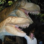 Colleen loved the real-life dinosaurs