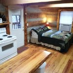Interior Skyy's Cabin Bed