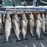 Windycitysalmon.com