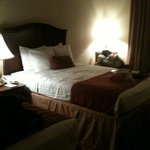 Foto BEST WESTERN PLUS Northshore Inn