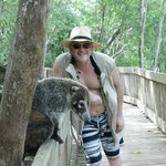 a friendly coati!