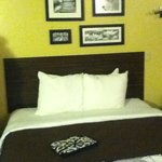Bilde fra Sleep Inn & Suites, Green Bay Airport