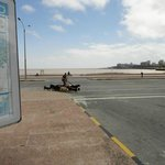 Rambla de Montevideo