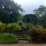 Botanical Garden (Jardim Botanico)