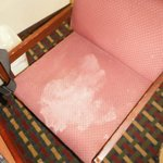 vomit stain on chair