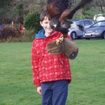  Christmas Eve, Falconry display