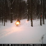 Snowmobiling at the Ilex Inn B&B