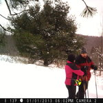 Snowshoeing at the Ilex Inn B&B