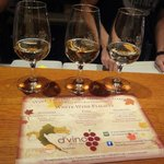  White Wine Tasting Flight