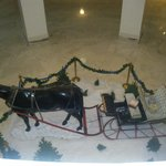  A one horse open sleigh. We visited at Christmas time.