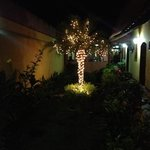 2012 Christmas decoration in the beautiful garden