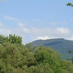 Mountain view from Dartbrook Lodge
