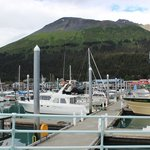  View of the Marina at Seward Boat Harbor
