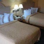 Ambassadors Inn & Suites - Virginia Beach