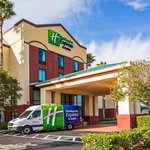 Holiday Inn Express & Suites Tampa Northwest Oldsmar