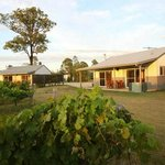 Emma's 2 Bedroom Cottages amongst the vines