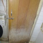 Moldy bathroom door (inside)