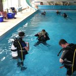  Divers enjoying a training session in large heated indoor swimming pool