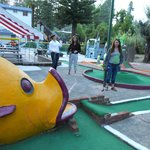 Pee Wee Golf & Arcade