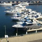 Yachts moored outside
