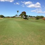 uninteresting fairways