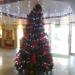 Holiday Inn Garforth - Christmas Tree