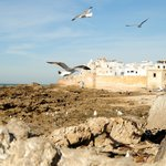 Essaouira