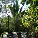 Photo de Nature Lodge Finca los Caballos