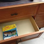 panned-out view of drawer with dead bugs