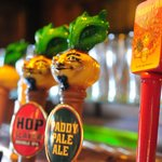 Wild Onion Brewing Co. tap handles
