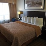 Quality Hotel Burlington Foto