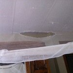 torn mosquito net over old bed