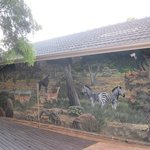 Near the pool, a beautifull wallpainting