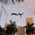 The Flying Trapeze School