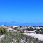  Dunes at Race Point Beach