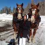 Sleigh ride with Rosie & Cody