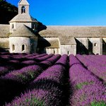 Avignon Prestige Tour - Private Day Tours