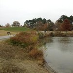 mt trashmore in the fall