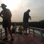 Gambia River Cruise Day Tours